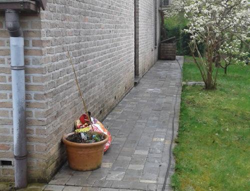 Ripen off garden path in Jezus-Eik