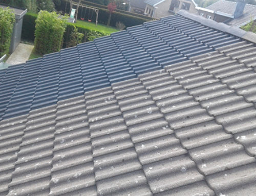 Cleaning and coloring of a pans roof in Overijse